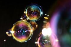 Bubbles (Apionid) Tags: soap bubbles selfportrait nikond7000 werehere hereios 2017 january