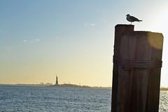 Liberty on the back (New York) (Doncardona) Tags: liberty island hudson river manhattan new york city nyc newyork usa united states america worldtraveler jpworldtraveler travel trip adventure journey nikon nikon3100 3100