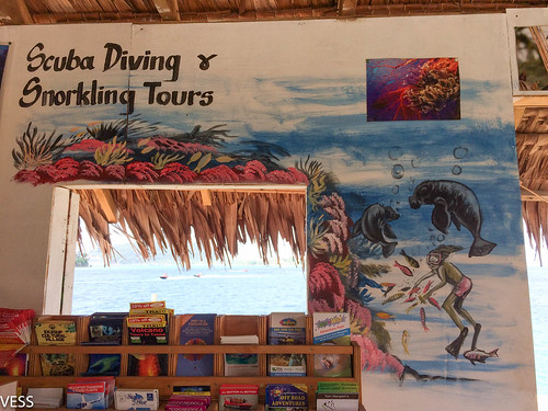 Sign with dugongs in a tour selling booth in Port Vila