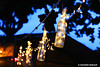 Beach Lights (charlotte.dubreuil) Tags: thailand thailande koh samui kohsamui chaeweng beach plage lumière light night nightshot nightview bottles bouteilles bouteille holidays vacances chill chillin canon canonphotography eos6d chaweng