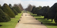 The Gardens at Hampton Court Palace (Steven Olmstead) Tags: gardens pathway trees benches green spring london d610