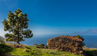 La Palma: Las Tricias