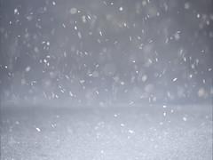 bokeh snow (marianna_a.) Tags: bokeh snow falling winter canada cold frozen snowflakes crystals p3460402 mariannaarmata happybokehwednesday hbw