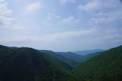 Valea Pausei