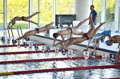 Volare (Il cantore) Tags: many dive piscina swimmingpool swimmers acqua tuffo molti