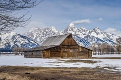 All By Myself (TNWA Photography (Debbie Tubridy)) Tags: winter mountain snow barn landscape outdoors scenic structure historic environment wyoming wilderness habitat grandtetonnationalpark moultonbarn tnwaphotography debbietubridy