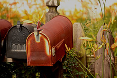 Mailbox (2bmolar) Tags: mailbox rural fence daylily odc day179 theletterm day179365 365the2015edition 3652015 28jun15
