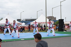 DC0_1192 (Eisbier) Tags: sport alaska training demo centennial do martial arts martialarts taekwondo celebration anchorage tae tkd kwon champ champmartialarts