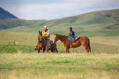 Father and Son (www.toddklassy.com) Tags: ranch boy horses west green grass horizontal clouds rural standing season children kid spring cowboy montana mt pair horizon father working meadow son hills riding together pasture gordon western learning teaching lesson copyspace chinook rancher cowboyhat hilly horseback equine oldfashioned ranching quarterhorse greatplains colorimage documentaryphotography roundingup nuturing blainecounty bearpawmountains gruszie