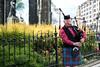 Bagpiper (The Oyster Girl) Tags: scotland edinburg bagpiper bagpipe ecosse cornemuse edimbourg joueurdecornemuse