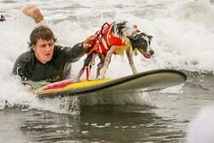 "Surf Dog Competition-CD-080115 (161) • <a style=""font-size:0.8em;"" href=""http://www.flickr.com/photos/25952605@N03/19648050924/"" target=""_blank"">View on Flickr</a>"