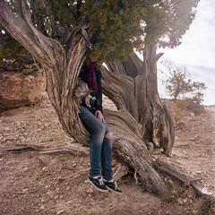 Kelly (Colton Davie) Tags: arizona portrait tree 120 film kodak grandcanyon january roadtrip kelly 2012 colornegative iso160 portra160 6x6cm rolleicordiii