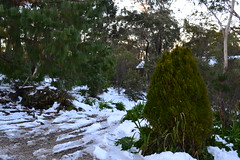 Mt.Victoria Brother's Retreat 018