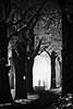 Frosty Walk (W_von_S) Tags: ebersberg allee alley bavaria bayern germany deutschland impression natur nature street strase trees bäume wvons werner outdoor cold kalt eiskalt foggy misty neblig nebel highcontrast blackwhite sw bw monochrome monochrom einfarbig frostywalk lowkey