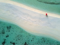 Red Umbrella Maldives South Ari Atoll (Mlenny!) Tags: aerialview ariatoll atoll beach concepts conceptsamptopics coral coralcolored exoticism highangleview horizontal ideas idyllic indianocean loneliness maldives maldivianethnicity midair nature outdoors parasol photography red reef sand sanddune sea seascape symbol traveldestinations tropicalclimate turquoisecolored umbrella vacations
