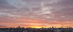 Rare sight in this winter (KariFinland) Tags: canon 5dmk2 2470mm sunrise finland lappeenranta