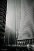 shinjuku (NINA KOB (on & off)) Tags: monochrome monotone blackandwhite city cityscape architecture light shinjuku tokyo