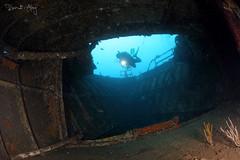 Inside (Randi Ang) Tags: bogawreck shipwreck wreckdive kubu bali indonesia boga wreck ship underwater scuba diving dive photography wide angle randi ang canon eos 6d fisheye 15mm randiang