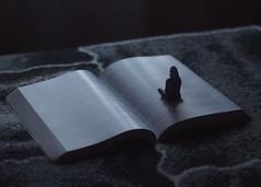 326/366: seclusion (Andrea · Alonso) Tags: me selfportrait autorretrato 366 365 book shadow sombra libro minime miniyo edit manipulation