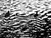 into the light (imposible?) Tags: ducks ripples waves water abstract blackandwhite monochrome texture patterns light silhouete