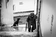 pura poesia (Hendrik Lohmann) Tags: street streetphotography strassenfotografie strase lisboa lissabon portugal nikon people menschen