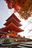 A symphony in Red (Red Cathedral has left Osaka) Tags: sonyalpha a77markii a77 mkii eventcoverage cosplay alpha larp sonyslta77ii slt evf translucentmirrortechnology alittlebitofcommonsenseisagoodthing kiyomizudera 清水寺 pagoda butto sony japan nippon nihon osaka kansai tempel scyscraper temple wolkenkrabber gratteciel japon fall autumn automn herfst leaves maple ginkgo colours red yellow geel rood coleur color wanderlust travel travelling november digitalnomad coloursoffall architecture shrine shinto buddist thelandofopposites asia voyage voyagedetective buddhist international japanairlines kyoto kioto
