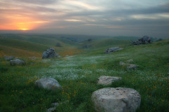 Land Of Fairies (jojo (imagesofdream)) Tags: california kerncounty flowers meadows sunset landscape