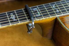"Guitar Capo- MM ""contraption"" (Karon Elliott Edleson) Tags: guitarlove macromondays contraption macro tamron60mm chords keys acousticguitar breedlove abalone"