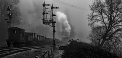 On the way (Peter Leigh50) Tags: blackandwhite monochrome train freight 70013 olivercromwell 462 great central railway winter gala gcr semaphore signal swithland sidings rothley mist fog steam