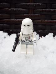 Snow Day 1 (silverhead2009) Tags: snow snowtrooper chewbacca chewie white frozen macro winter lego
