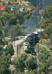 GM32, 4497, 4463 and JL402, on 4168, climb Cowan Bank. Main North, NSW, 26th October, 2004. (garratt3) Tags: aus digital pentax rail railroad standardgauge 44class train gmclass lvrf mainnorth jumbo railway railways trains jlclass dieselpower dieselfreight australia nsw newsouthwales