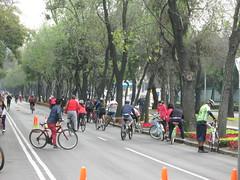 Mexico City 012