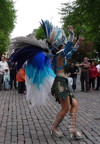 DSC03007 samba carneval 060615