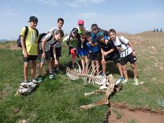 P7020127 (Club Pyrene) Tags: cerdanya estiu pirineos pirineus campaments pyrene campamentos colònies colòniesestiu