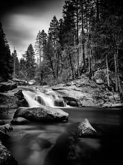 The falling stream (M.ALKHAMIS) Tags: leica alkhamis malkhamis sonya7r