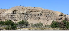 IMG_0231.jpg (DrPKHouse) Tags: arizona unitedstates loco bullhead chemehuevi mohavevalley