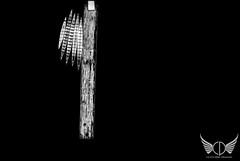 DJI INSPIRE 1 (Oregun2012) Tags: sunset sun storm building water rain clouds oregon sunrise photography aerial pacificnorthwest aerialphoto pdx gorge mansion portlandoregon pnw columbiagorge pittockmansion lakeoswego pittock vistahouse stjohnsbridge bartonpark dji traveloregon inspire1 djiinspire1