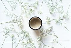 (CarolienCadoni..) Tags: sonyslta99 sal50f14 50mmf14 coffee white flowers bokeh photography still stilllife