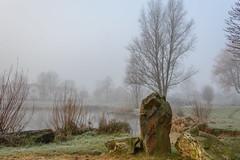Beukenpark-4-1 (stevefge) Tags: beuningen mist nederland netherlands park water winter rocks trees nl nature natuur landscape gelderland frost nederlandvandaag reflectyourworld