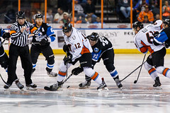 "Missouri Mavericks vs. Wichita Thunder, January 7, 2017, Silverstein Eye Centers Arena, Independence, Missouri.  Photo: John Howe / Howe Creative Photography • <a style=""font-size:0.8em;"" href=""http://www.flickr.com/photos/134016632@N02/31438174913/"" target=""_blank"">View on Flickr</a>"