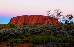 Uluru After Sun Setting (Tiffany XY) Tags: australia northern territory nt red centre outback uluru ayers rock sandstone uluṟukata tjuṯa national park monolith unesco sunset landscape