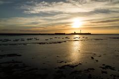 LA HORA DORADA (bacasr) Tags: castillo castle mar andalucía water reef faro dorado dusk agua botes arrecife clouds spain boats nubes lighthouse twilight golden atardecer lowtide sea cádiz españa mareabaja