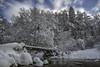 Hockai, Belgium (PROSPECT2607) Tags: belgium hockai hoëgne winter snow landscape bridge capture composition exposure forest longexposure langesluitertijd sky bos nature outdoor photography streams trees water stream sneeuw landschap