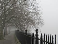 Grosvenor Road - Riverless (Capella Silverangel) Tags: misty morning mistymorning fog peasoup pea soup weather london river thames battersea power station grosvenor road bobmarley bob marley