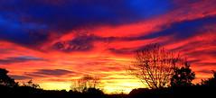 Silhouette SUNRISE (Lani Elliott) Tags: sunrise sky skies cloud clouds tasmania australia colour colourful bright vibrant beautiful silhouette silhouettes
