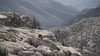 Sarrio (Fermin Pagola) Tags: sarrio pirineos huesca