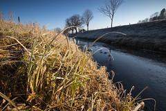 frosty morning (LarsGerritS) Tags: frost frosty früh morgen morning fluss river riet reflektionen