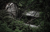 IMG_9376 (joaopedrodias) Tags: nature wild old field trees houses abandoned stories leftovers canon 450d eos tamron life happened before time