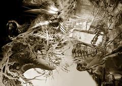 Confrontacion interior (| Photograper | Digital Artist |) Tags: confrontacion me panic dark ghotic art artistic surreal surrealista oscura wow artistica face rostro miradas mirada interior introspective