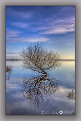 reflection (Ken Duke 03) Tags: tree reflection canon60d colours clouds blue horizon outdoor serene shore